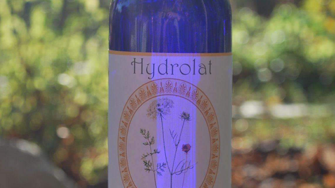 Hydrolat de Carotte sauvage Bio